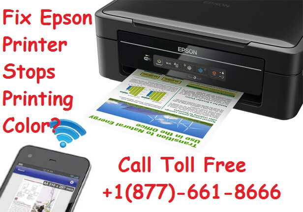 Epson Printer Stops Printing Color