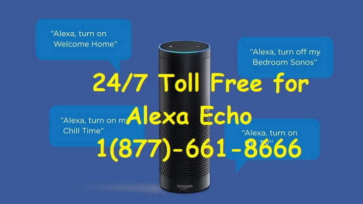Amazon Alexa Echo, Echo Dots Echo plus support Number