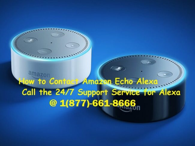 How to Contact Alexa Tech Support